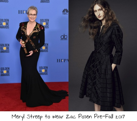 meryl-streep-2017-academy-awards-nominees-luncheon-red-carpet-wish-list-1