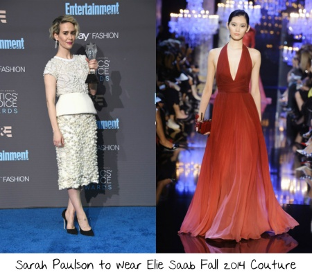 sarah-paulson-2017-sag-awards-red-carpet-wish-list-1